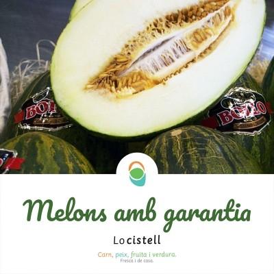 Melons Bollo, deliciosos i garantits